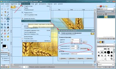 Параметры изображения в GIMP