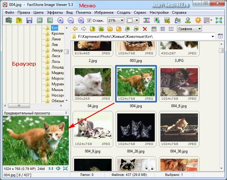 Программа Для Просмотра Jpg Файлов Скачать Бесплатно - фото 5