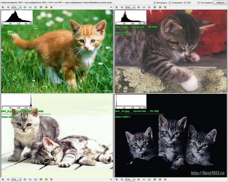 Фотографий просмотра для программу dsc