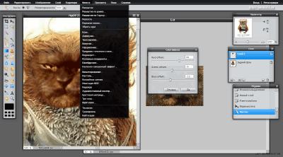 Использование эффектов в редакторе Pixlr