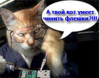 Кот паяет флешку