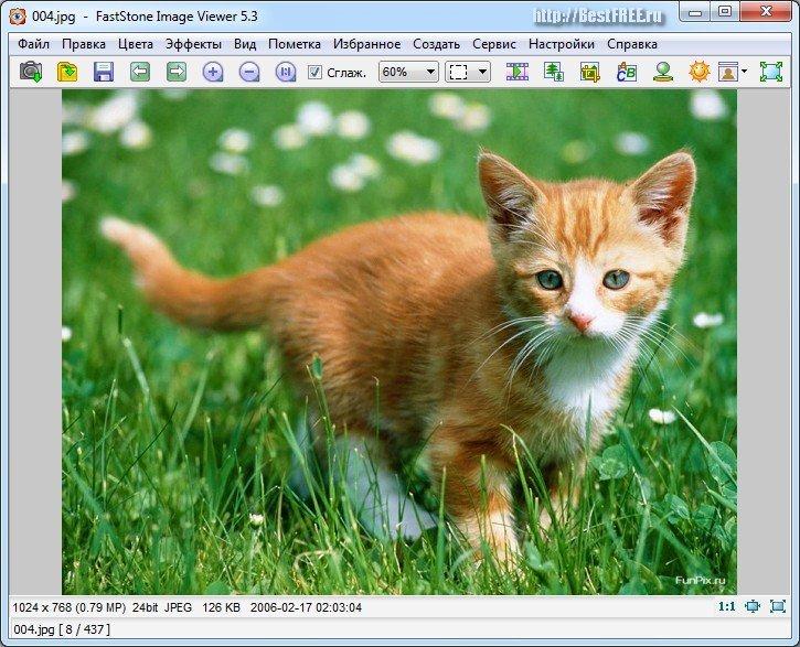 программа просмотра изображений и факсов скачать