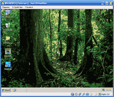 Virtual Machine: VirtualBox 6.0.4